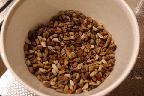 大豆でも何でも、堅い穀物は煮る前に水に浸す。鉄則。