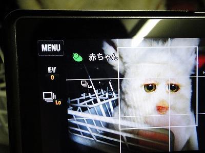 デジカメは「赤ちゃん」と顔認識するのか