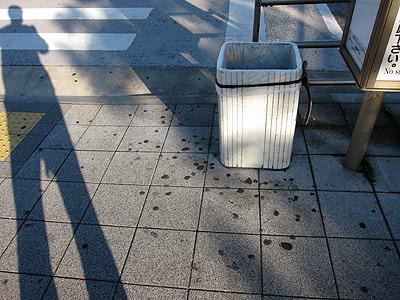 バス停のゴミ箱周辺。捨てようとして外れて落ちたのだろうか。かなりのガムぼくろである。外れたら入れ直せばいいのに。