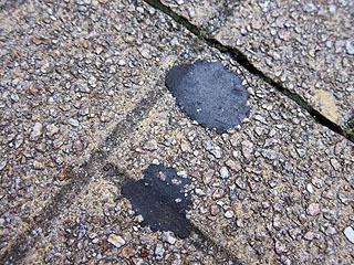 砂利混じりのタイルはガムを取りにくい。