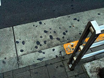 横断歩道横のガム密集エリア。