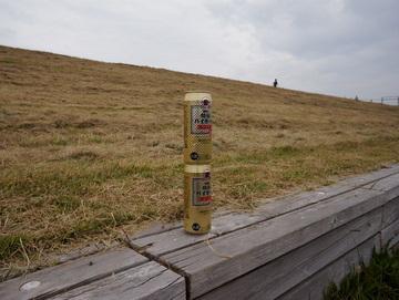 荒川の土手に建設されるバベルの塔。