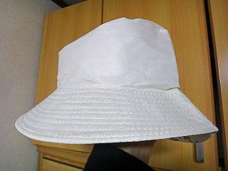 100円均一で買ってきた帽子を…