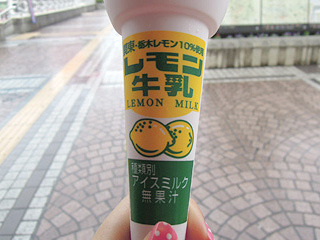 「栃木レモン10%使用 無果汁」の記載に戸惑う