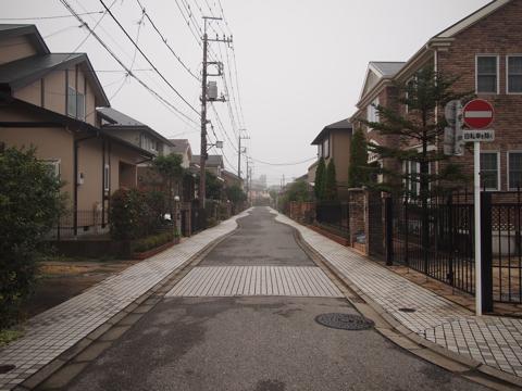 絵に描いたような新興住宅街を横目に線路沿いを進むと