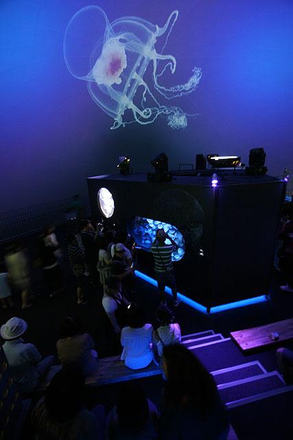 クラゲコーナーは特にすごいことになっている。 プラネタリウムのように天井にクラゲが映し出される。