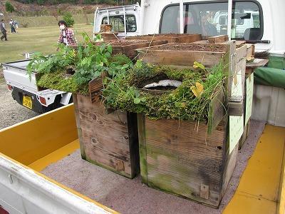 特に気に入った巣箱がこれ。