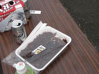 コンテスト参加者のおじさんたちがイナゴの佃煮をアテにして一杯やっていた。ホントに虫食べるの好きだなー!