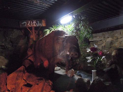 山のイノシシの剥製に「猪明神」と書かれていた。なんでも祀るのか