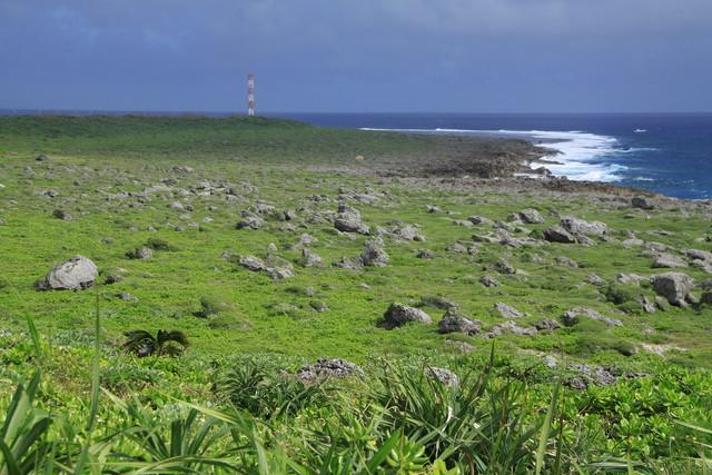 石灰岩の岩ゴロゴロ