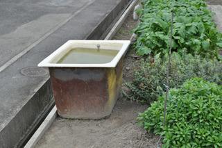 農業にお風呂は必須。
