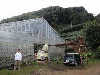 裏が茶畑で静岡ムード