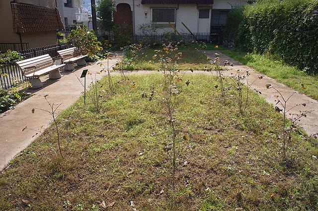現在は一応、ベンチもあるし植物も植えられているところは… (2011年11月撮影)
