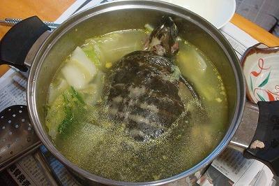 出来上がったスッポン鍋。見た目はあまり良くないが…。