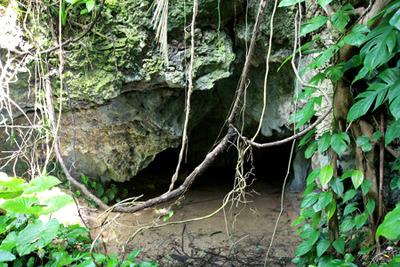 って、そもそも洞窟の入口ごと水に浸かっていて入れない。入りたければオオガエルになれって事か