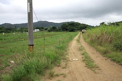 この道の奥に見える丘が気になった