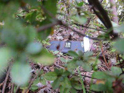2011年12月12日、東京都内の森林より、不時着した宇宙船と見られる金属製の構造物が発見された
