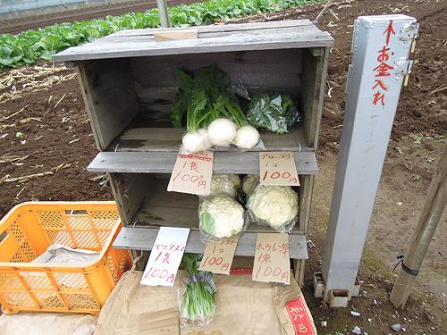 外国人が日本シンジラレナイ!と驚くのが無人販売所とよく聞くけど、たしかに無防備なシステムですね
