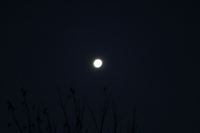月だけがものすごく明るかった