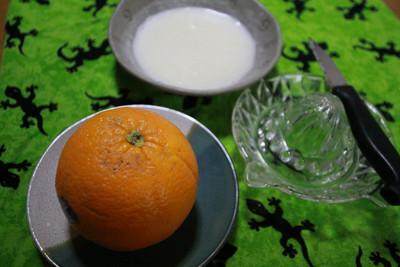 柑橘類のトップバッター、オレンジ