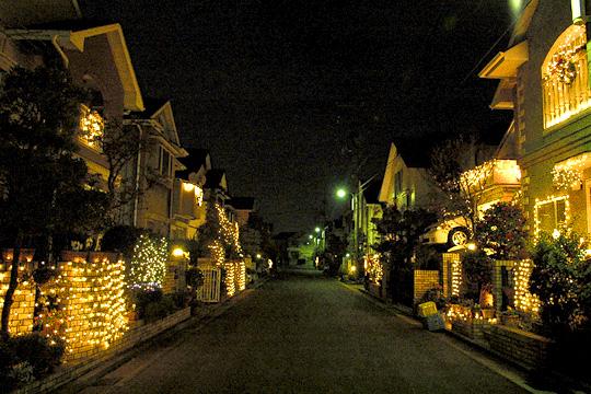 これは例年のこの住宅街の様子。おみごと。しかし、今年はどうか…