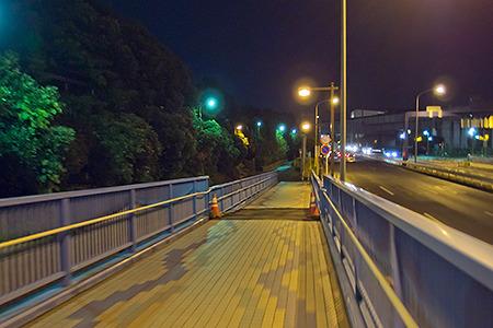 長い陸橋を越えた、この左の緑地帯の向こうが、例年ならたいそうな浮かれ具合なのだが…