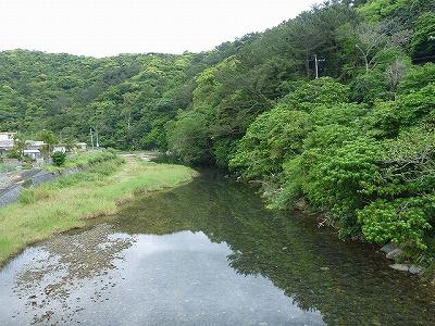 沖縄まで来ていながら目指すフィールドは川。