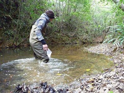 実はこの取材を行ったのは3月。いかに沖縄と言えど渓流の水は恐ろしく冷たい。