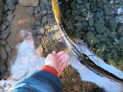 周囲の池の水は凍っているのだが、湧き水はあまり冷たくない(早春の水道水くらいの温度である)