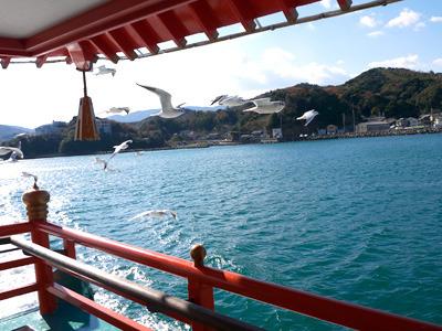 外に出ると、船の周りをカモメがビュンビュン飛び交っていてビビリました
