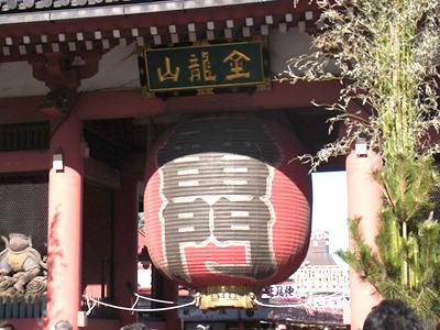 実は京都生まれ