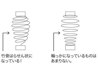 実は螺旋構造