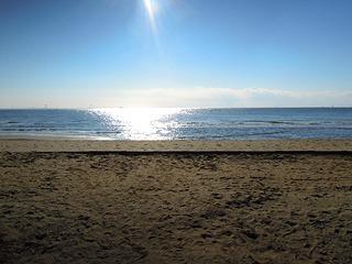 冬の海は静か