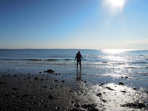 海の藻くずと消えゆく人