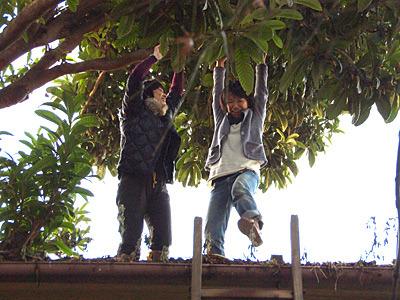 料理ができるのを待っている間に、屋根の上に登っちゃう人。北村さん、雨漏りとかしていませんか。