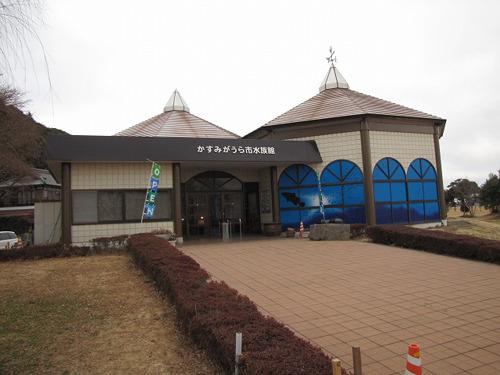 困った時はプロに頼もう!やって来たのは茨城県のかすみがうら市水族館。