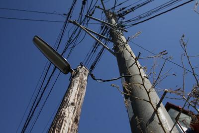 電柱と比べると、随分と細くて背が低い