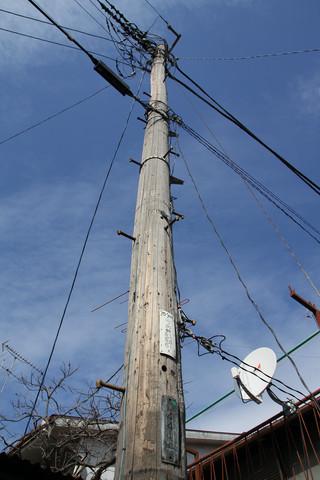天を貫く白木の柱