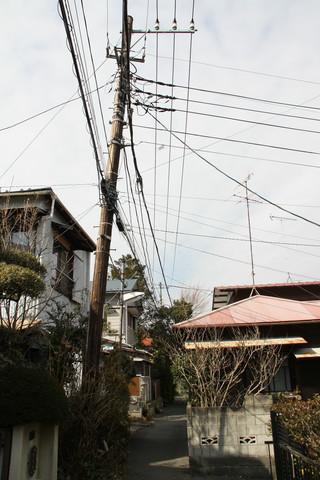 引き続き見つけた木の電柱