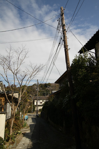 木の電柱はまだまだ続く