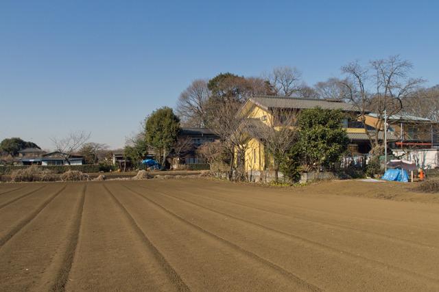 その畑を行った先に、こうやって住宅があって、