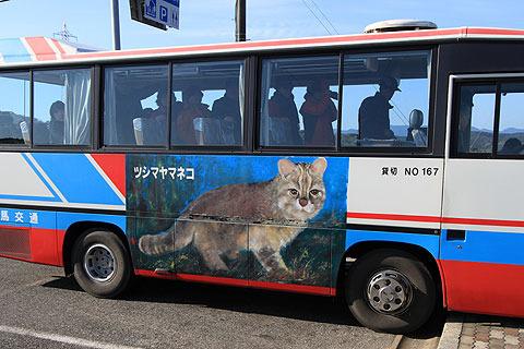 こんなバスも目撃。