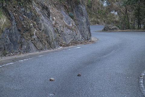 道路にはカジュアルに石が落ちている。