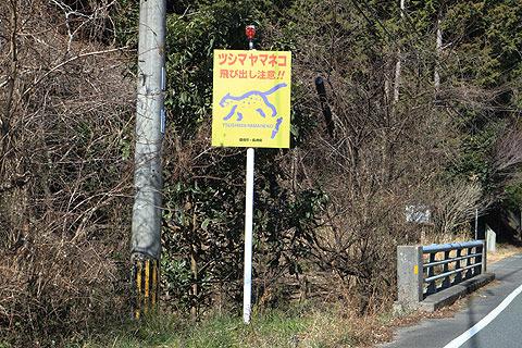 行く先々にヤマネコ飛び出し注意の看板がある。