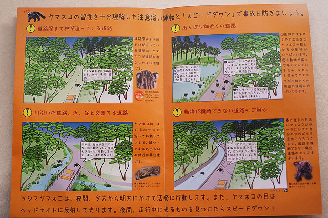 「ツシマヤマネコ交通事故防止のためのエコドライバーズマニュアル」より
