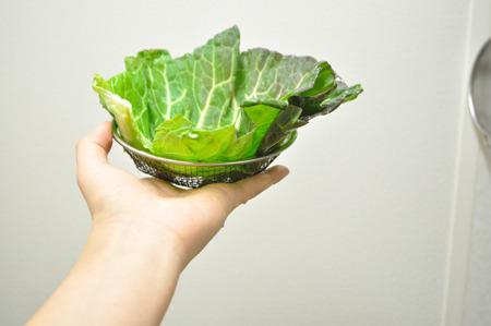 サラダっぽい、鍋