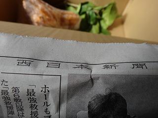 知らない新聞が詰められてる味わい