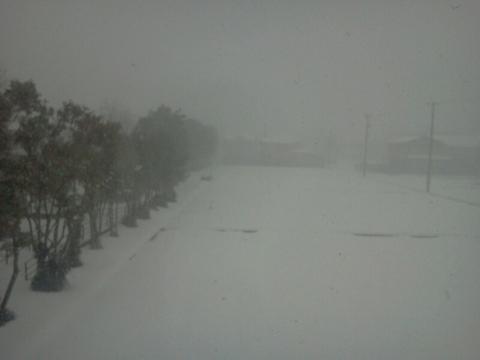 予報通り、雪降りしきる金沢。