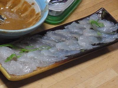 一緒に出していただいたフグの刺身。透き通っている。うん、白身魚ってこういうのだよな。
