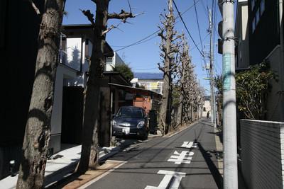細い路地に並木とか、やはり一味違う町だ